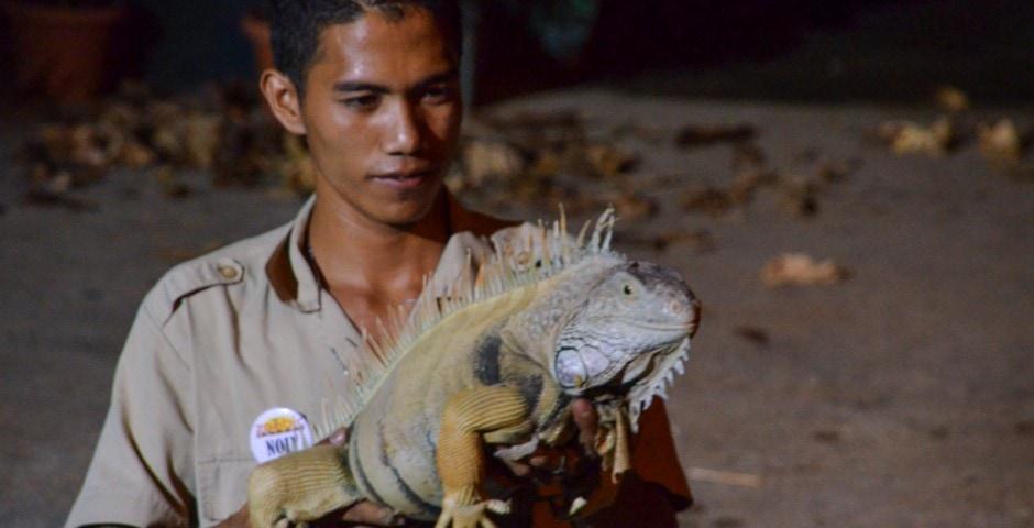Photo de mon voyage aux Philippines - Zoo de Subic et Subic 13