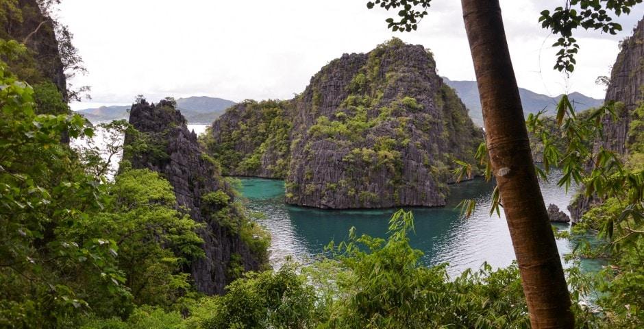 Photo de PALAWAN lors de mon voyage aux Philippines 15
