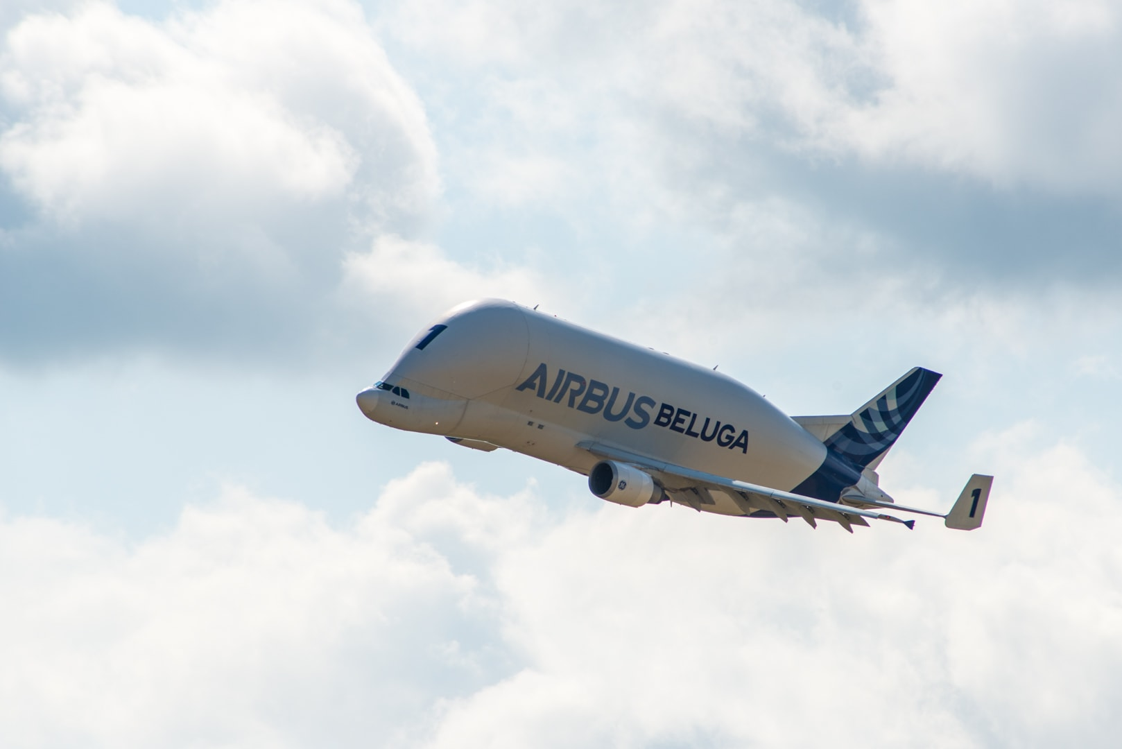 Photo d'avion le Beluga de Airbus lors du meeting aérien sur Toulouse ( Lherm)